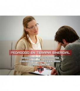 Curso Pedagogo en Terapia Sinergial