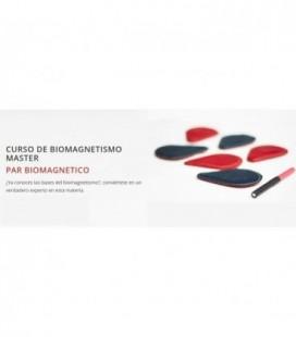 Curso de Biomagnetismo Master