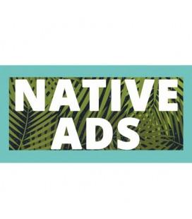 Curso Native Ads