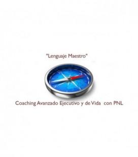 Lenguaje Maestro